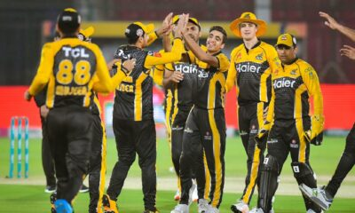 Peshawar Zalmi pick their batting mentor for PSL 2021